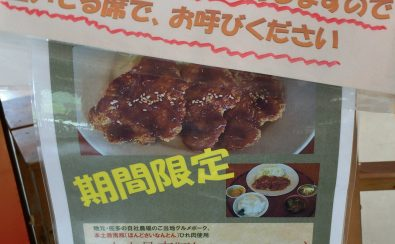 本土最南豚ひれかつ定食